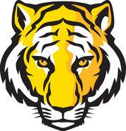 Shadowrun - Gold Tiger (Internet)
