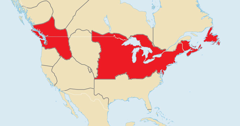 Irish Syndicates (North America)