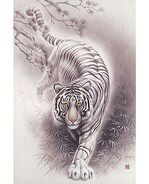 White Tiger (Internet)