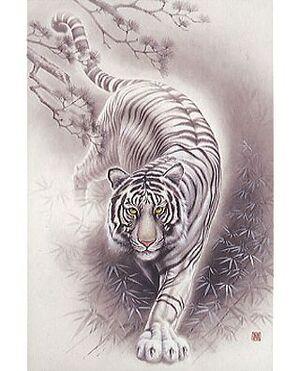 White Tiger (Internet).jpg