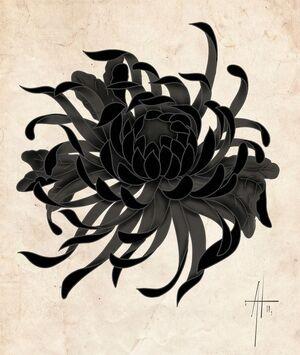 Chrysanthemum (Internet).jpg