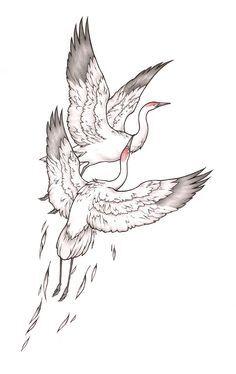 White Crane (Internet).jpg