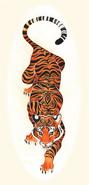 Tiger (Internet)