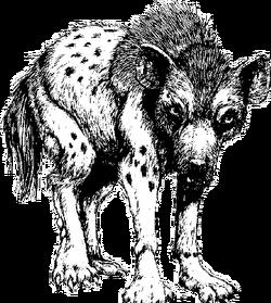 Aardwolf.png