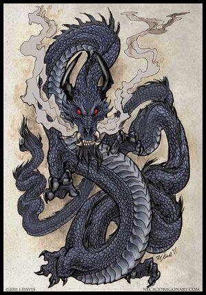 Black Dragon, 2nd version (Internet).jpg
