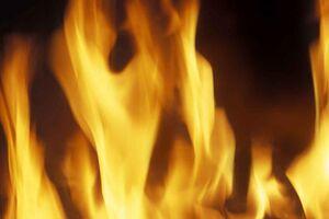 Golden Flames (Internet).jpg