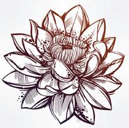 Lotus Flower (GetDrawings.com)