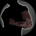 Icon cyberware ghoul arm.tex.png