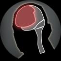 Icon bio cerebralbooster.tex.png