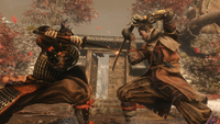 Sekiro-Okami-Sword-Fight