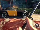 Lo Wang's Car