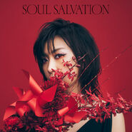 Soul salvation