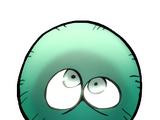 Торара