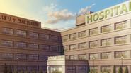 Больница Фумбари-га ока SKPR