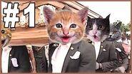 Dancing Funeral Coffin Meme - CATS VERSION-1602717781