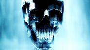 Warlock Lord Skull