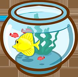 Аквариум «Золотая рыбка»