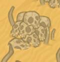 Whackable desert skulls.png