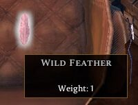 Wild Feather