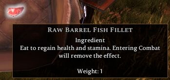 Raw Barrel Fish Fillet