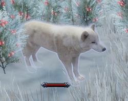 Arctic Howler
