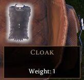 Cloak (clothing)