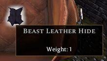 Beast Leather Hide