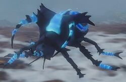 Thawed Beetle