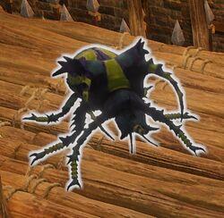 Venomous Beetle