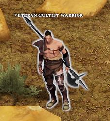 Veteran Cultist Warrior