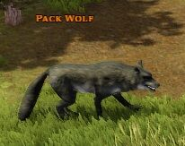 Pack Wolf