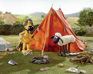 Shaun and Bitzer explore messy camp