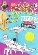 Bitzer everyones favourite sheepdog
