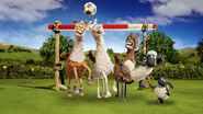 The Farmer's Llamas Promotional Image 4