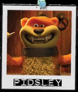 Pidsley card