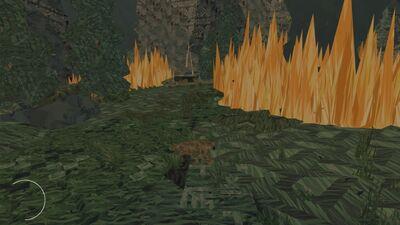 Forest Fire Shelter2.jpg