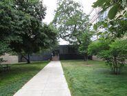 IIT Shimer College 3424 3440 S State walkway