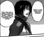 Mikasa et son opinion sur la situation.png