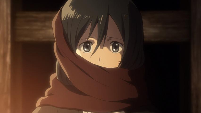 Mikasa Schal.png