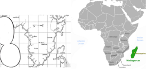 Marley and Paradis compared to Africa and Madagascar