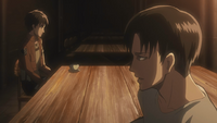 Levi does not blame Eren