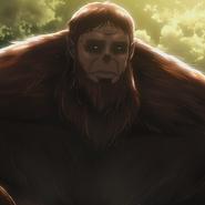 Tiertitan (Anime)