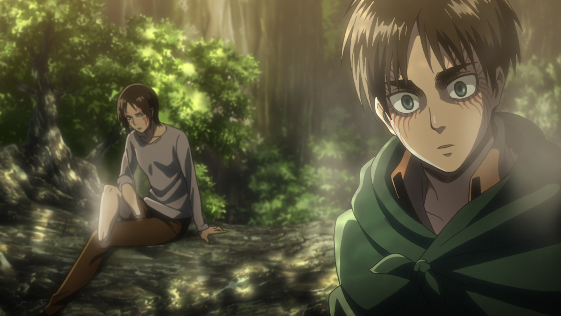 Forest Of Giant Trees Anime Attack On Titan Wiki Fandom