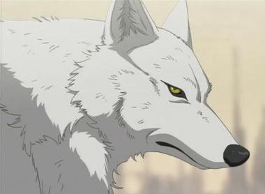Blaze (Wolf)