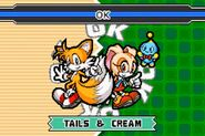 SonicAdvance3 Tails&Cream