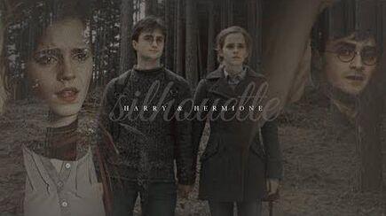 Harry & Hermione Silhouette