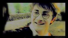 Echo Harry + Luna