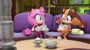 SonicBoom Amy&Sticks tea