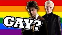 Are They Gay? - Harry Potter and Draco Malfoy (Drarry)