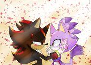 Shadow&Blaze flower